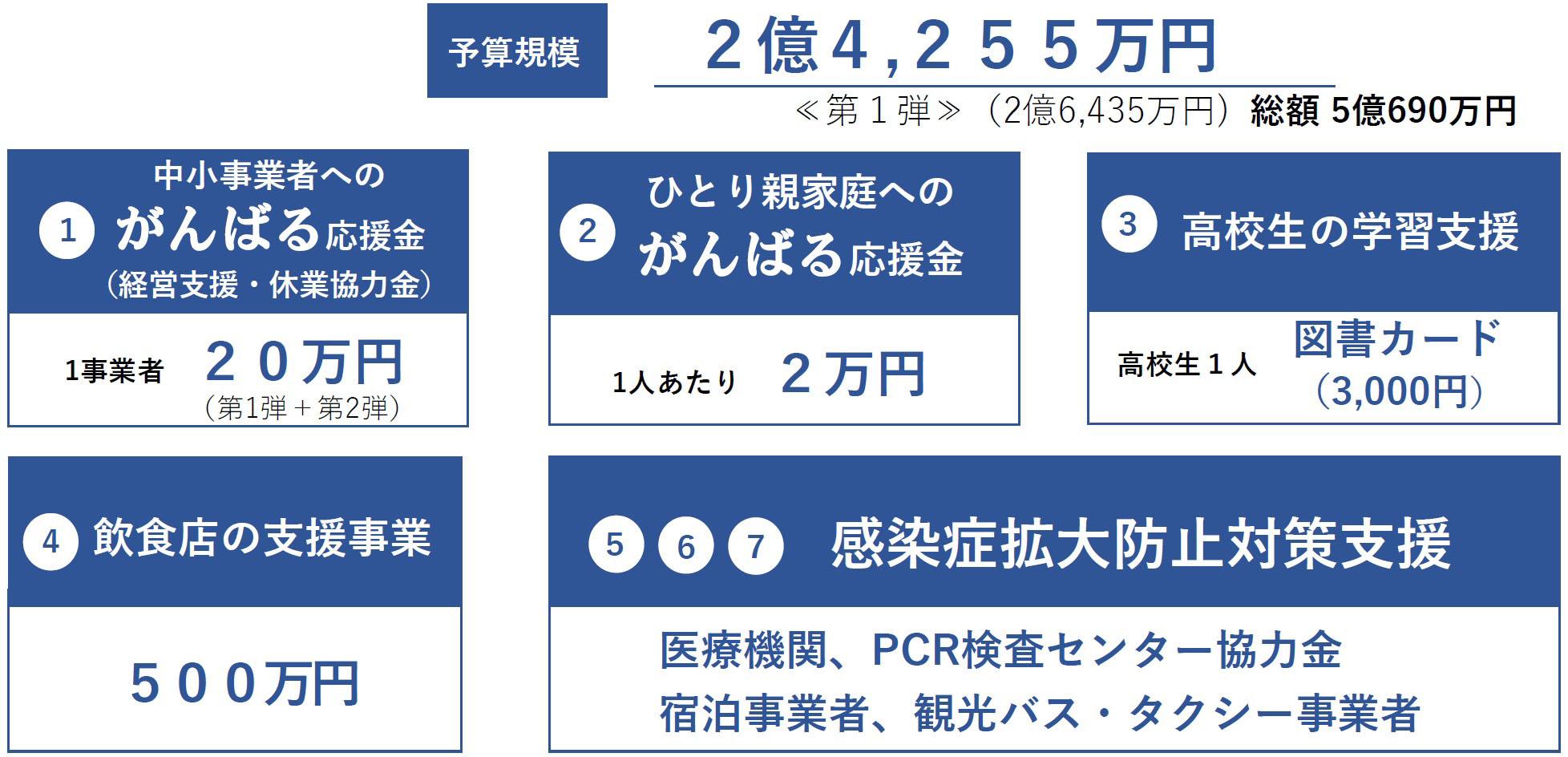 柳川 コロナ ウイルス